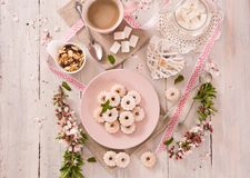 Canestrelli biscuits. Canestrelli biscuits with icing sugar stock photos