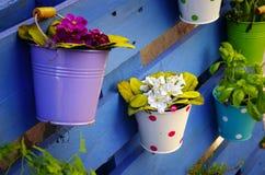 Canestri del fiore Fotografie Stock Libere da Diritti