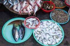 Canestri in pieno di frutti di mare al mercato bagnato immagine stock