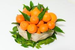 Canestro arancio Immagine Stock Libera da Diritti