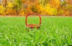 Canestro, autunno, inverno Fotografie Stock