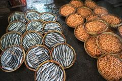 Canestro bollito del gamberetto e del pesce Frutti di mare che elaborano al mercato ittico in Quy Nhon, Vietnam del sud Fotografie Stock Libere da Diritti