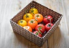 Canestro con dieci pomodori Fotografie Stock