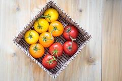 Canestro con dieci pomodori Fotografia Stock