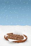 Canestro con i biscotti che stanno nella neve Fotografie Stock