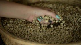 Canestro con i chicchi di caffè archivi video