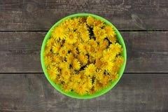 Canestro con i fiori gialli dei denti di leone sui precedenti di legno marroni Immagine Stock