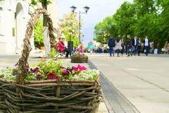 Canestro con i fiori sulla via della città Gente ambulante fotografia stock libera da diritti