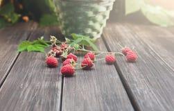 Canestro con i lamponi vicino al cespuglio sulla tavola di legno in giardino Fotografia Stock