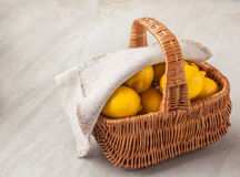 Canestro con i limoni Immagine Stock