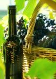 Canestro con l'uva e una bottiglia Fotografie Stock
