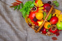 Canestro con la frutta ed il punto di vista superiore delle verdure Immagine Stock Libera da Diritti