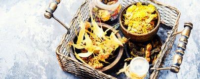Canestro con le erbe medicinali Immagine Stock Libera da Diritti