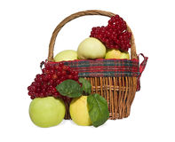 Canestro con le mele ed il viburno Immagini Stock Libere da Diritti