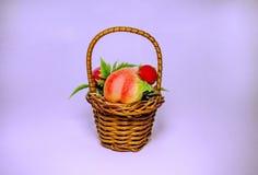 Canestro del fiore e della frutta fotografie stock libere da diritti