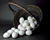 Canestro dell'uovo Fotografie Stock Libere da Diritti