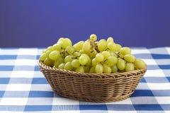 Canestro dell'uva bianca Fotografia Stock Libera da Diritti
