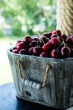 Canestro della ciliegia Cherry Tree Branch Ciliege mature fresche ch dolce Fotografia Stock