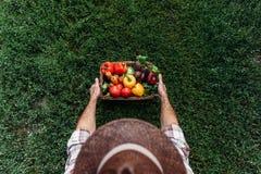 Canestro della tenuta dell'agricoltore con le verdure Fotografie Stock Libere da Diritti