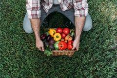 Canestro della tenuta dell'agricoltore con le verdure Fotografia Stock Libera da Diritti