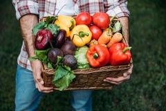 Canestro della tenuta dell'agricoltore con le verdure Immagine Stock Libera da Diritti