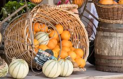 Canestro delle arance e dei meloni in un supporto del mercato di Moustiers Sain Fotografie Stock Libere da Diritti