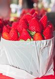 Canestro delle fragole di recente selezionate e mature Fotografia Stock Libera da Diritti