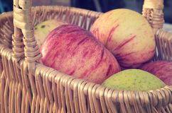 Canestro delle mele Fotografia Stock