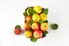 Canestro delle mele Immagini Stock Libere da Diritti