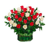 Canestro delle rose rosse e bianche Immagini Stock