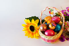 Canestro delle uova di Pasqua di Pasqua Fotografia Stock