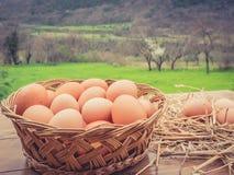 Canestro delle uova e del fieno italiani freschi, sulla tavola di legno fotografie stock libere da diritti