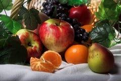 Canestro di frutta di natura morta fotografia stock libera da diritti