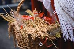 Canestro di grano Fotografia Stock Libera da Diritti