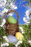 Canestro di Pasqua con le uova Immagini Stock Libere da Diritti