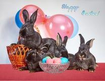 Canestro di Pasqua e un vaso con le uova vicino ai quattro conigli immagini stock