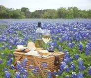 Canestro di picnic con vino, formaggio e pane in Texas Hill Countr Immagini Stock