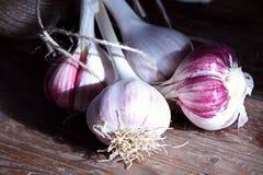 Canestro di vimini dell'aglio fresco del raccolto e una bobina della corda Fotografie Stock
