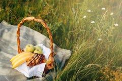 Canestro di vimini su erba verde, picnic nel parco fuori il giorno di estate fotografie stock