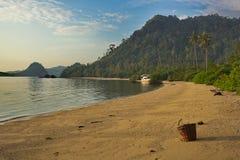 Canestro di Wattled sulla spiaggia tropicale Immagine Stock