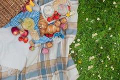 Canestro ed alimento di picnic Prato verde con i fiori Primavera nei Paesi Bassi feste Vista da sopra fotografie stock libere da diritti