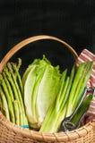 Canestro a lamella tessuto annata delle verdure verdi organiche Immagini Stock Libere da Diritti