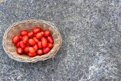 Canestro in pieno dei pomodori freschi e rossi su calcestruzzo Priorità bassa delle verdure e delle frutta immagine stock libera da diritti