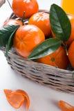 Canestro pieno del mandarino immagini stock libere da diritti
