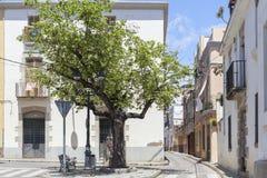 Canet de Mar,Catalonia,Spain. Royalty Free Stock Image