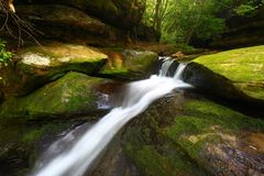 Caney-Nebenfluss-Fall-Landschaft Alabama stockfotos