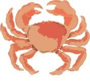 Cangrejo atlántico crustáceo rojo grande stock de ilustración
