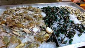 Cangrejo de caballo, crustáceos del mejillón y de la ostra frescos en el hielo en la bandeja hecha del acero inoxidable metrajes