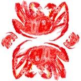 Cangrejo de rey rojo cocinado Ejemplo de la acuarela aislado en el fondo blanco libre illustration