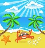 Cangrejo feliz en sombrero con la estrella y las flores, en la isla meridional Fotos de archivo libres de regalías